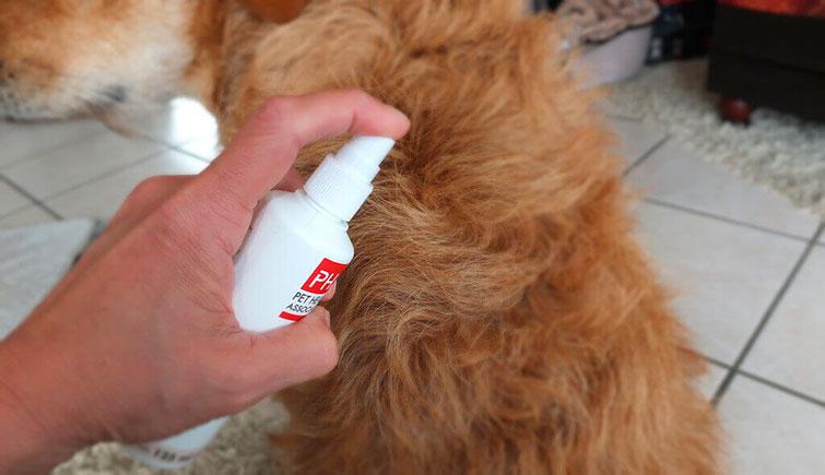 Спрей от маллофагоза у собак.