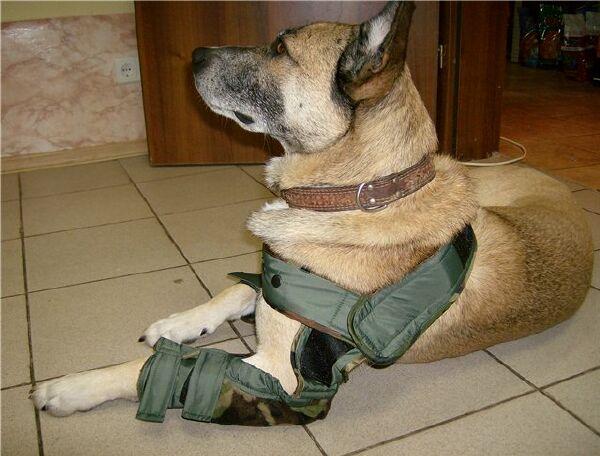 Локтевые накладки для собак